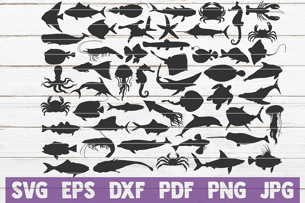 Ocean Creatures SVG Cut Files | commercial use example image 1