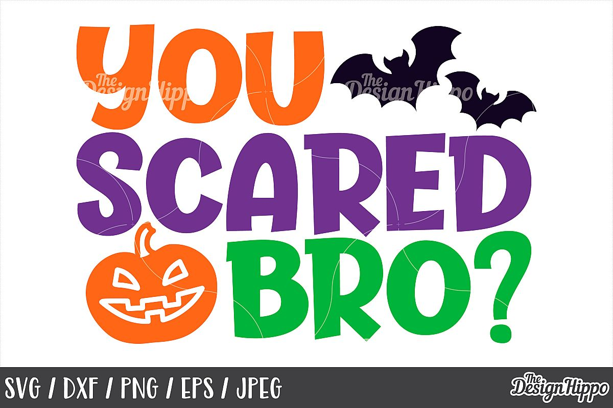 You scared bro SVG, Halloween, Kids, Boys, Pumpkin, Bats SVG example image 1