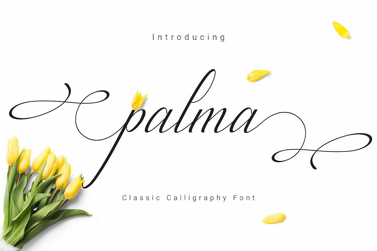 Palma Script example image 1