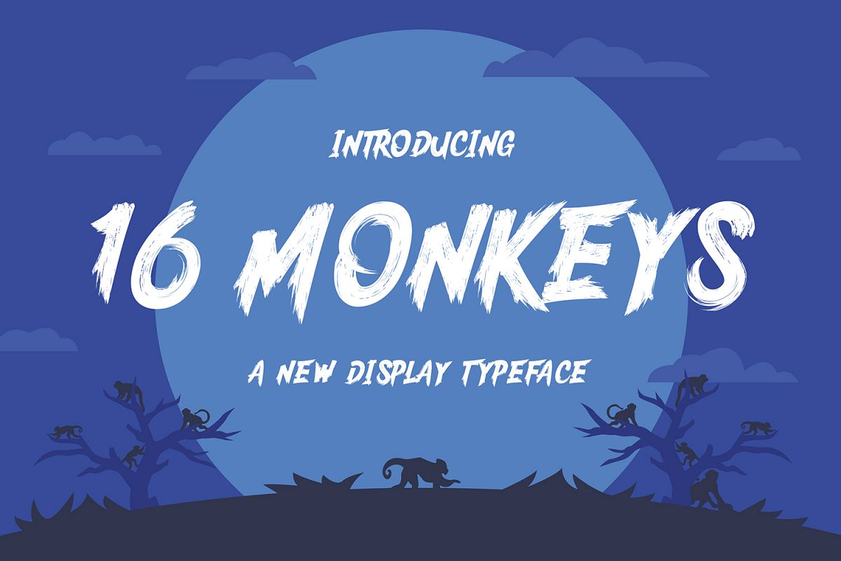 16 Monkeys example image 1