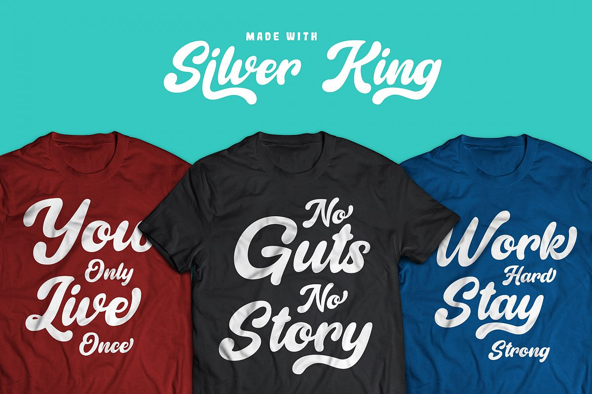 Silver King - Script Font example image 1