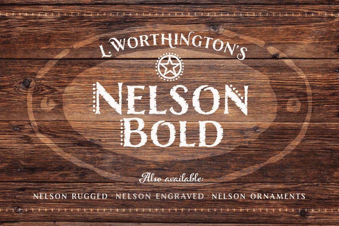 Nelson Bold example image 1