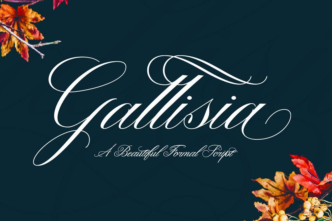 Gallisia Script example image