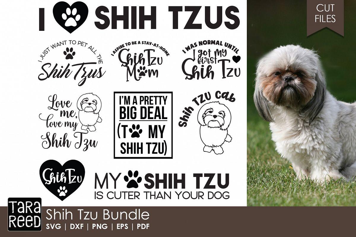Shih Tzu Bundle