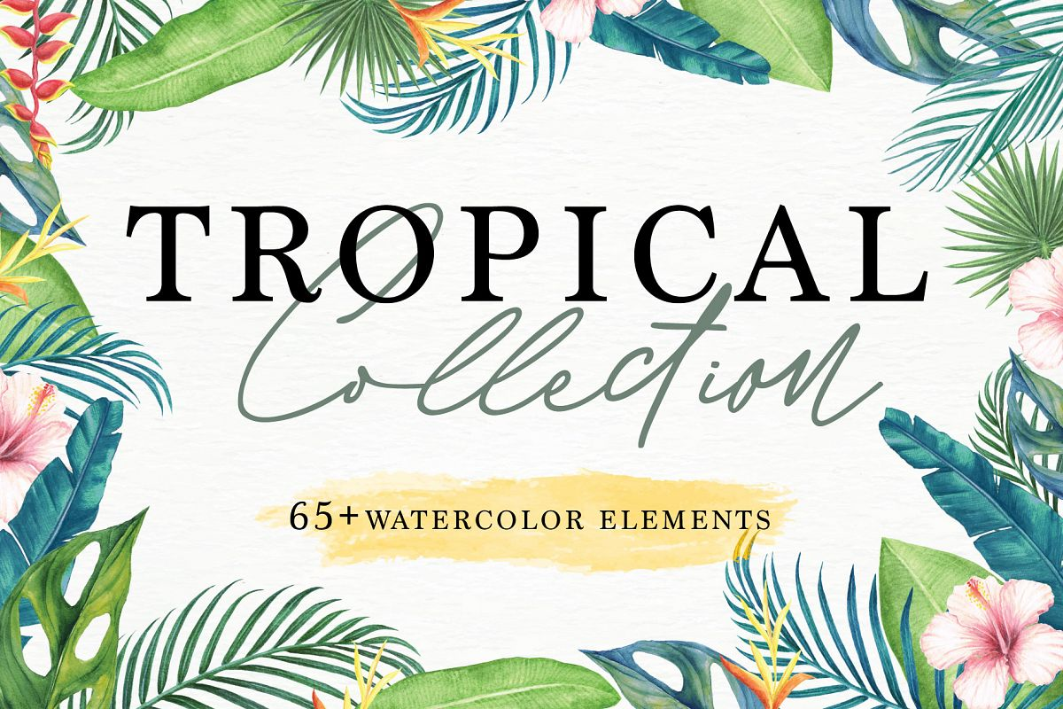 Tropical Collection - 65 Watercolor Elements example image 1