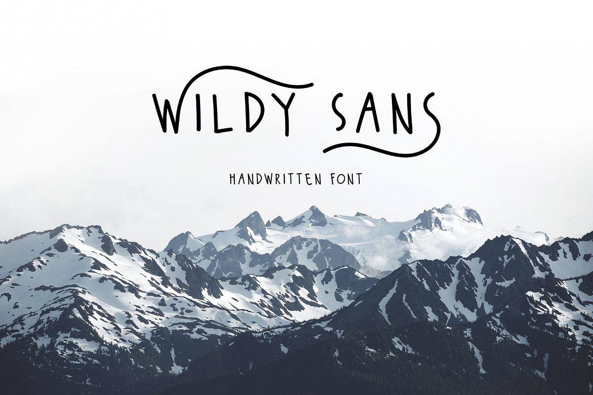 Wildy Sans example image 1