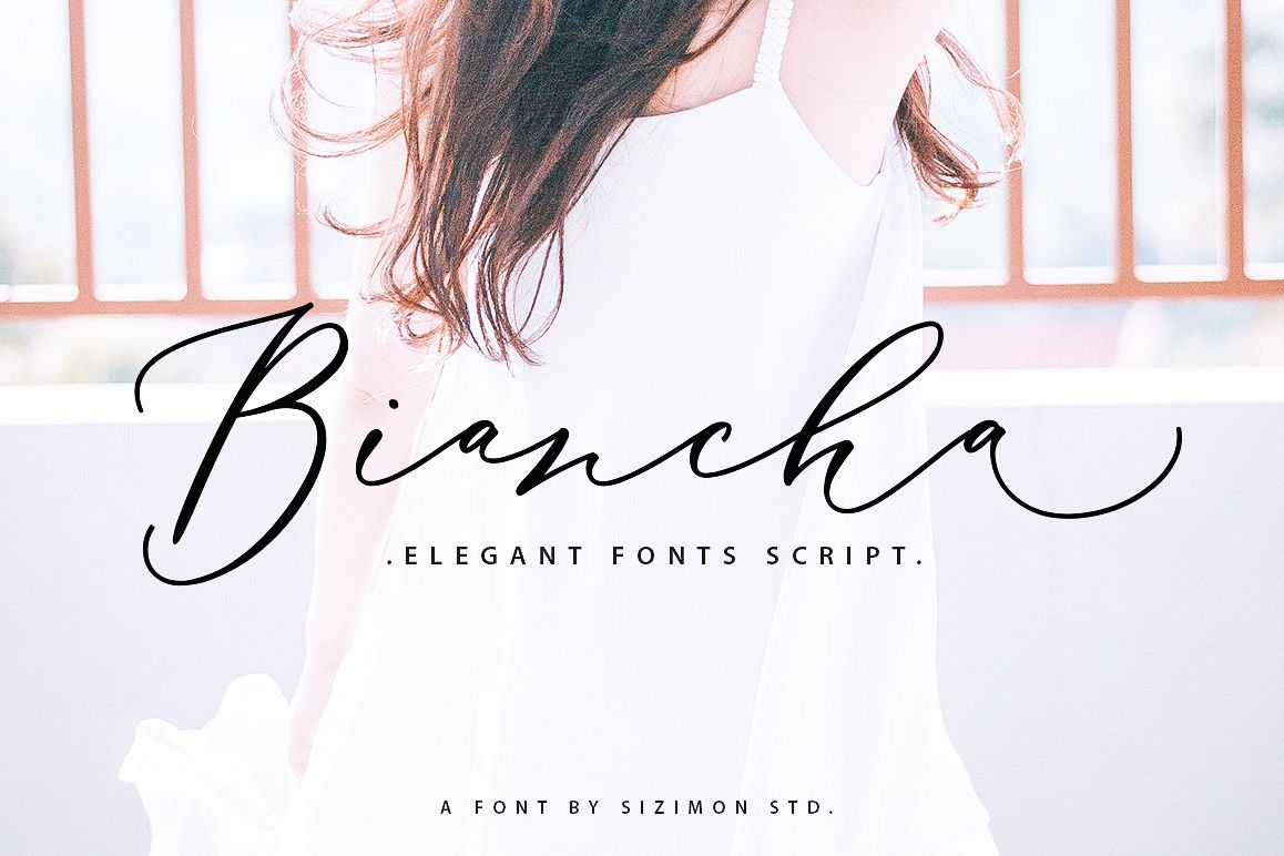 Biancha Script 40% OFF example image 1