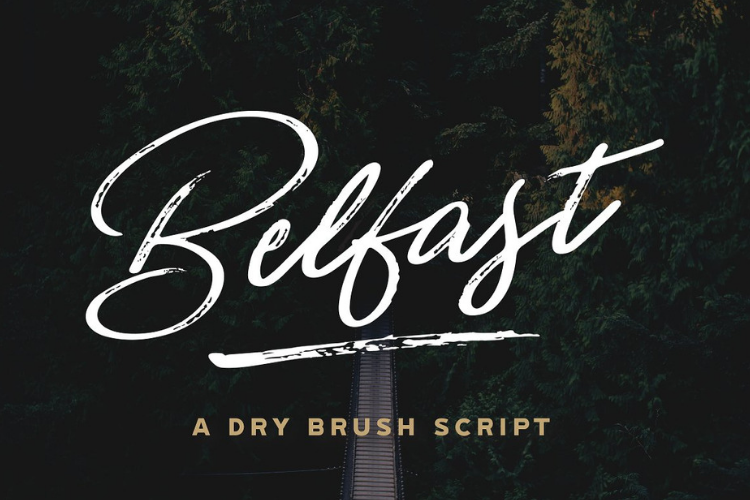 Belfast - A Dry Brush Script example image 1
