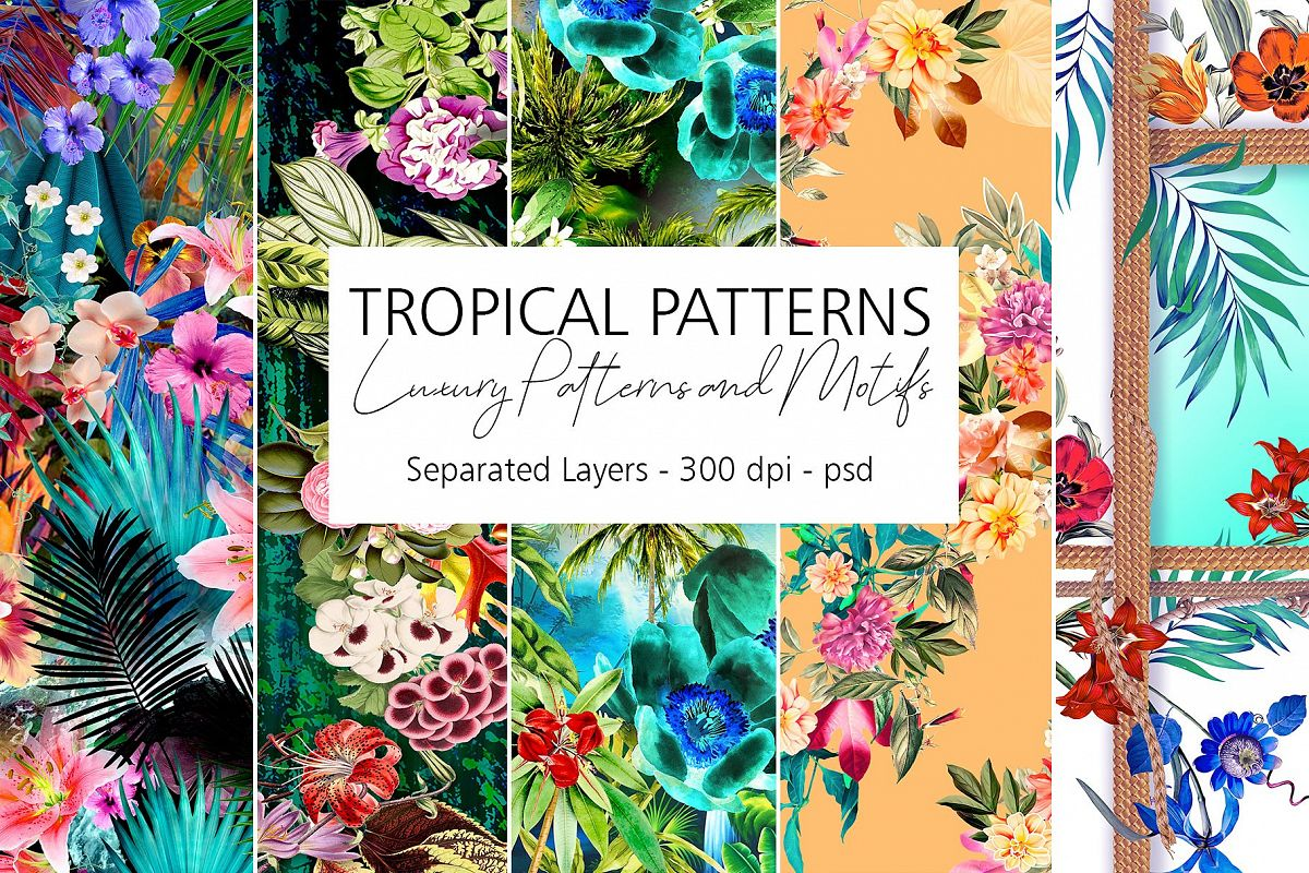 Tropical Patterns example image 1
