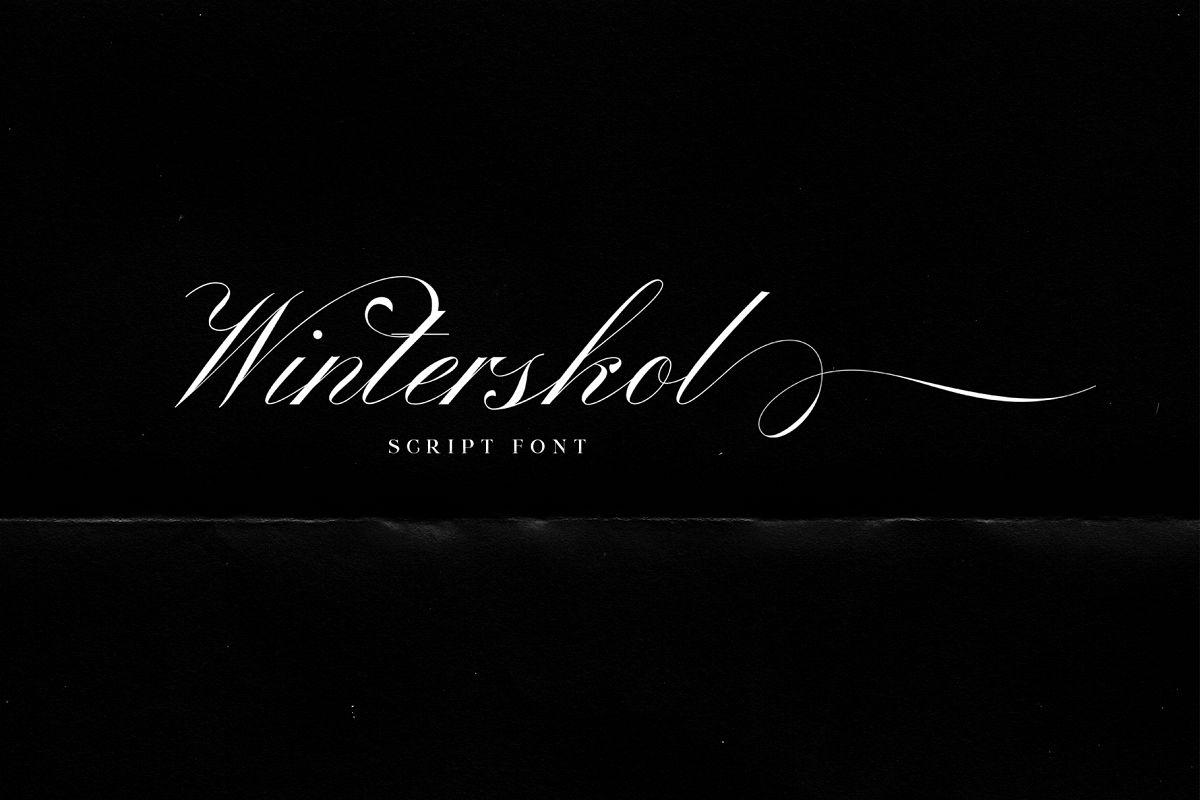 Winterskol Script font example image 1