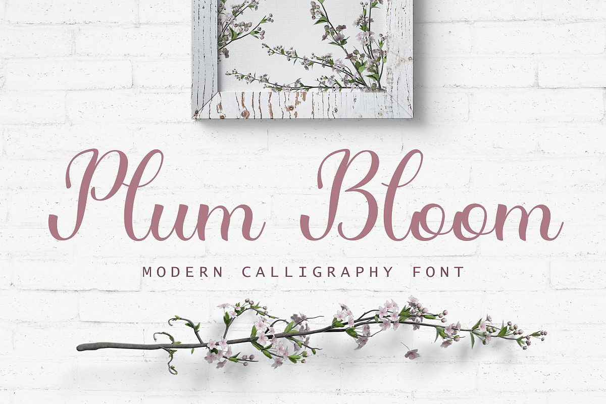Plum Bloom - handwritten calligraphy font example image 1