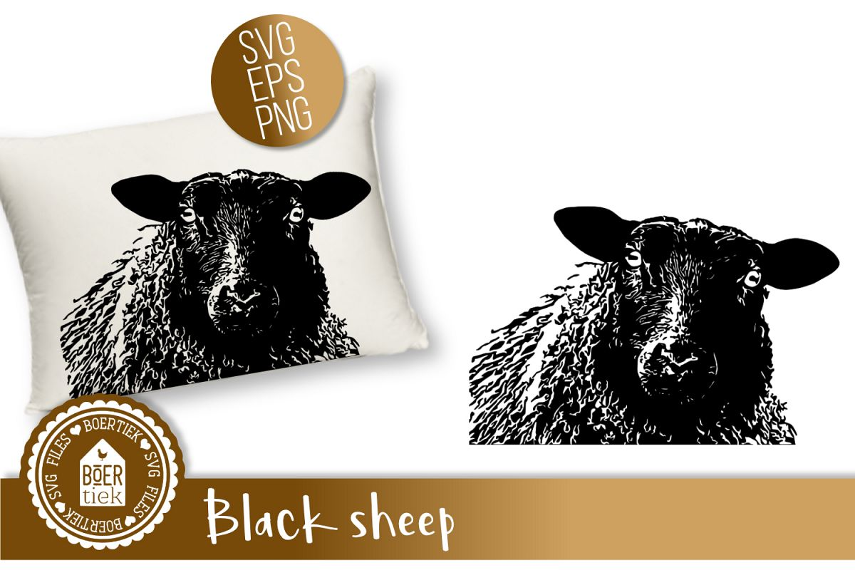 Black sheep example image 1