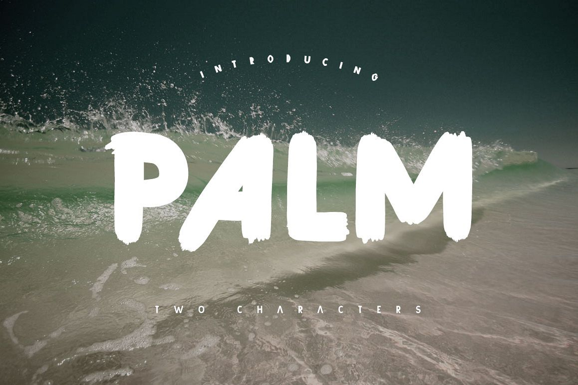 Palm Brush Font example image 1
