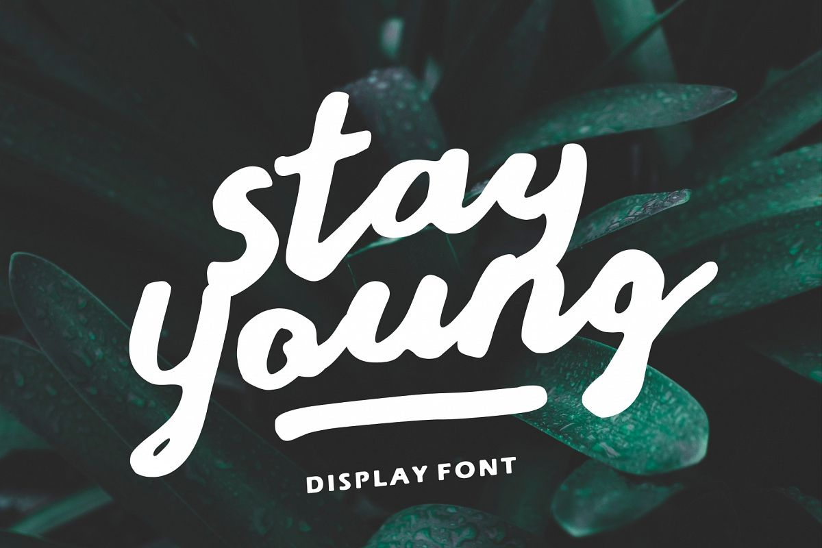 Stay Young - A Display Font example image 1
