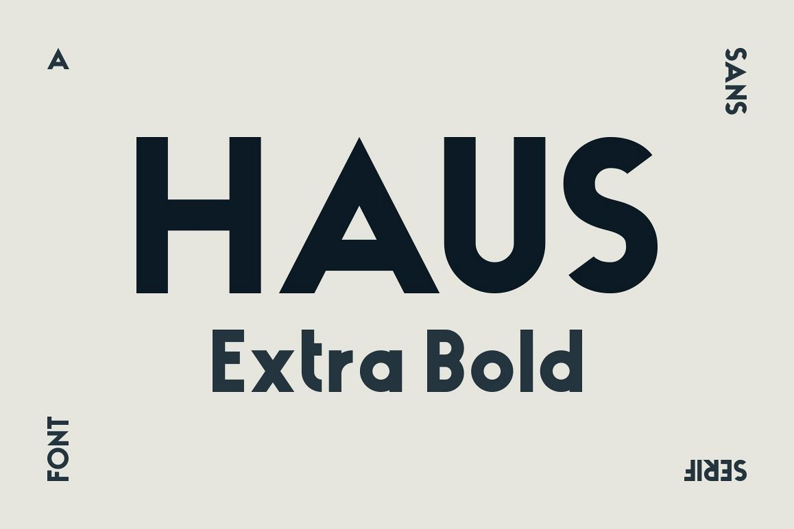 HAUS Sans Extra Bold example image 1