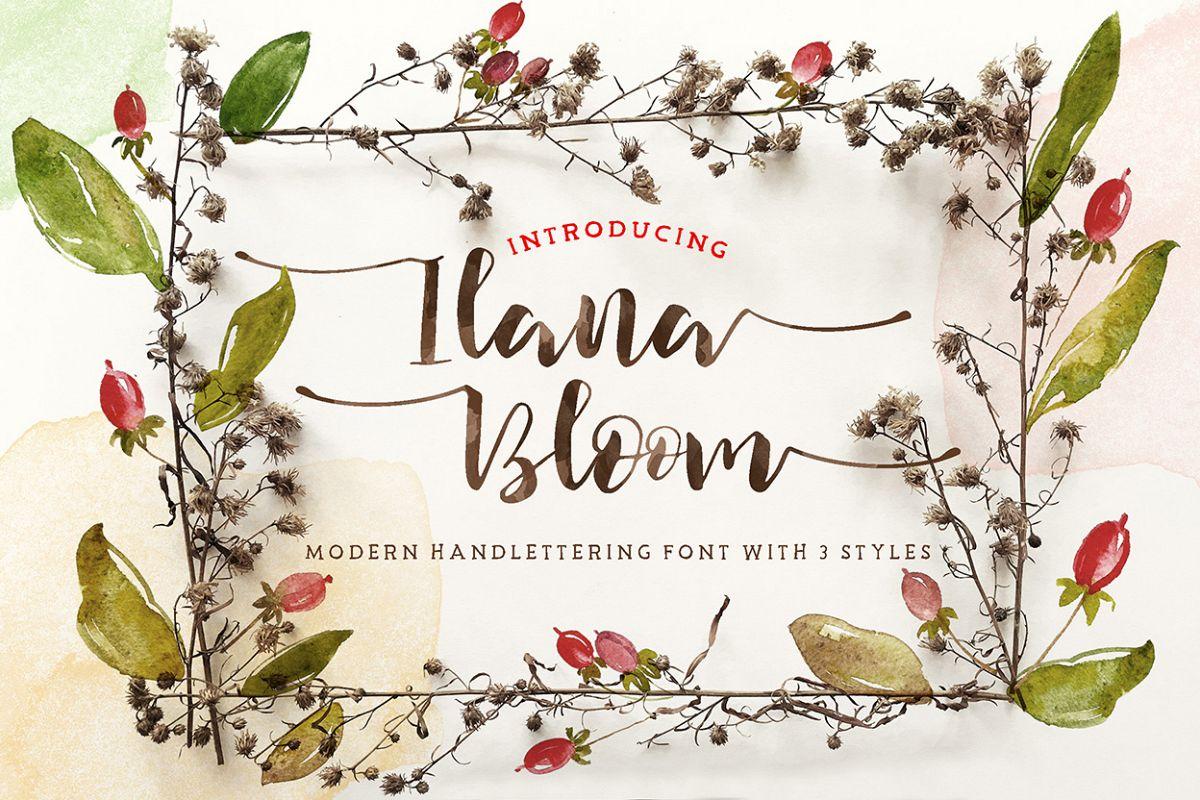 Ilana Bloom example image 1
