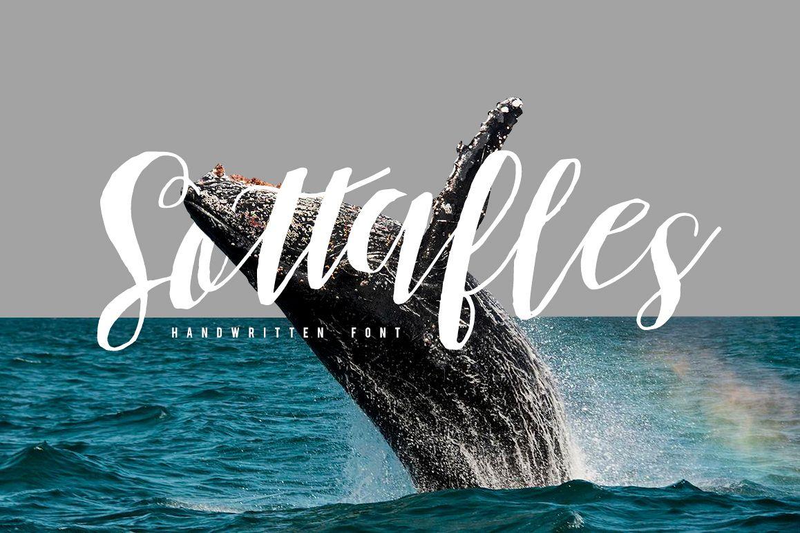 Sottafles Typeface + Swashes example image 1