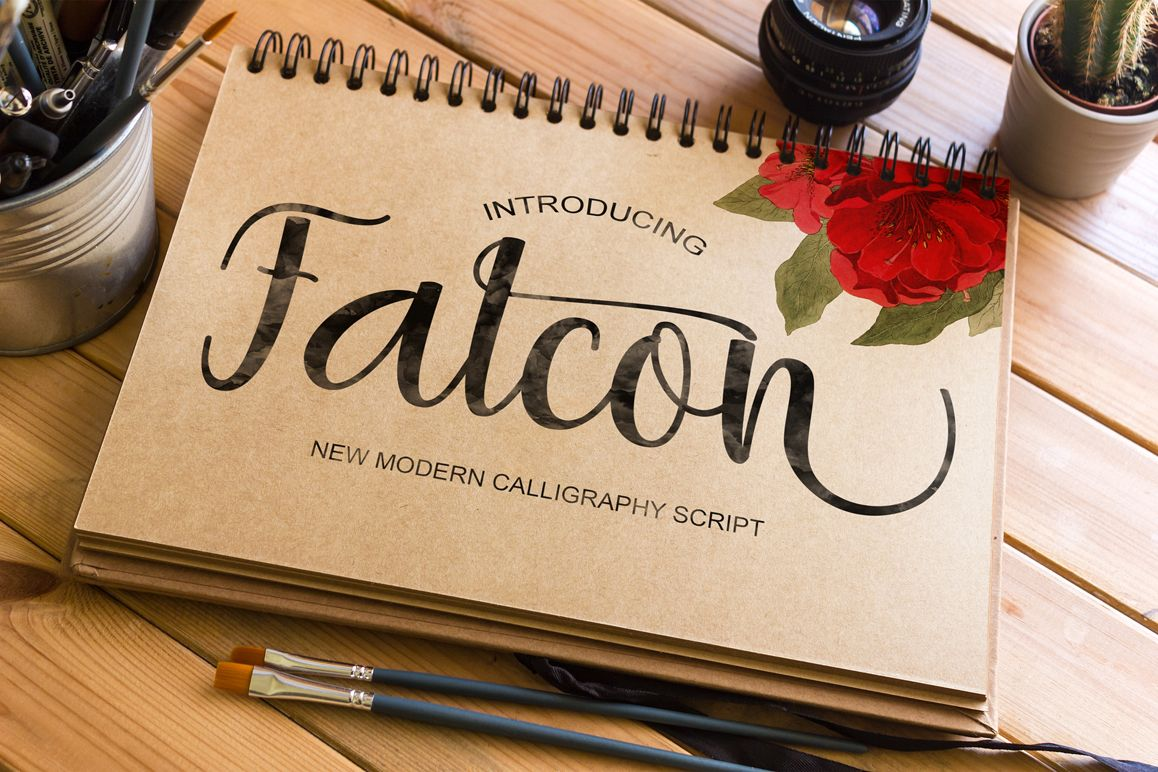 Falcon example image 1
