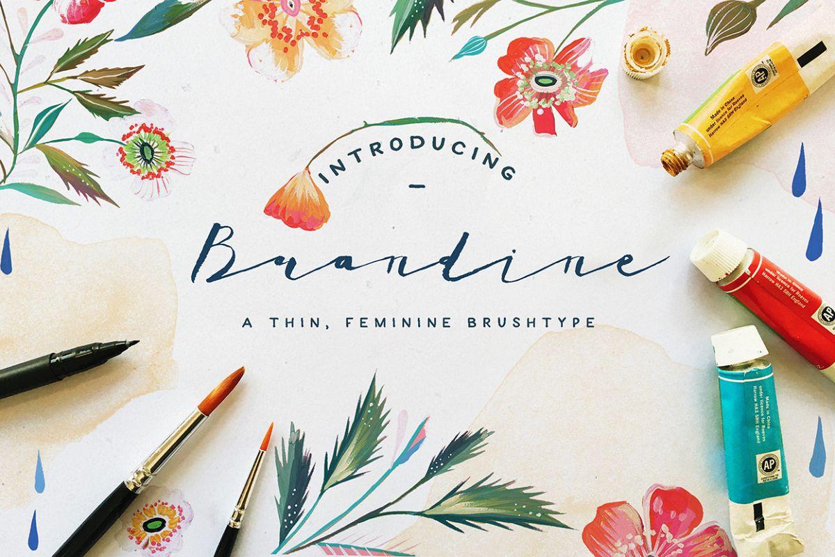 Brandine example image 1