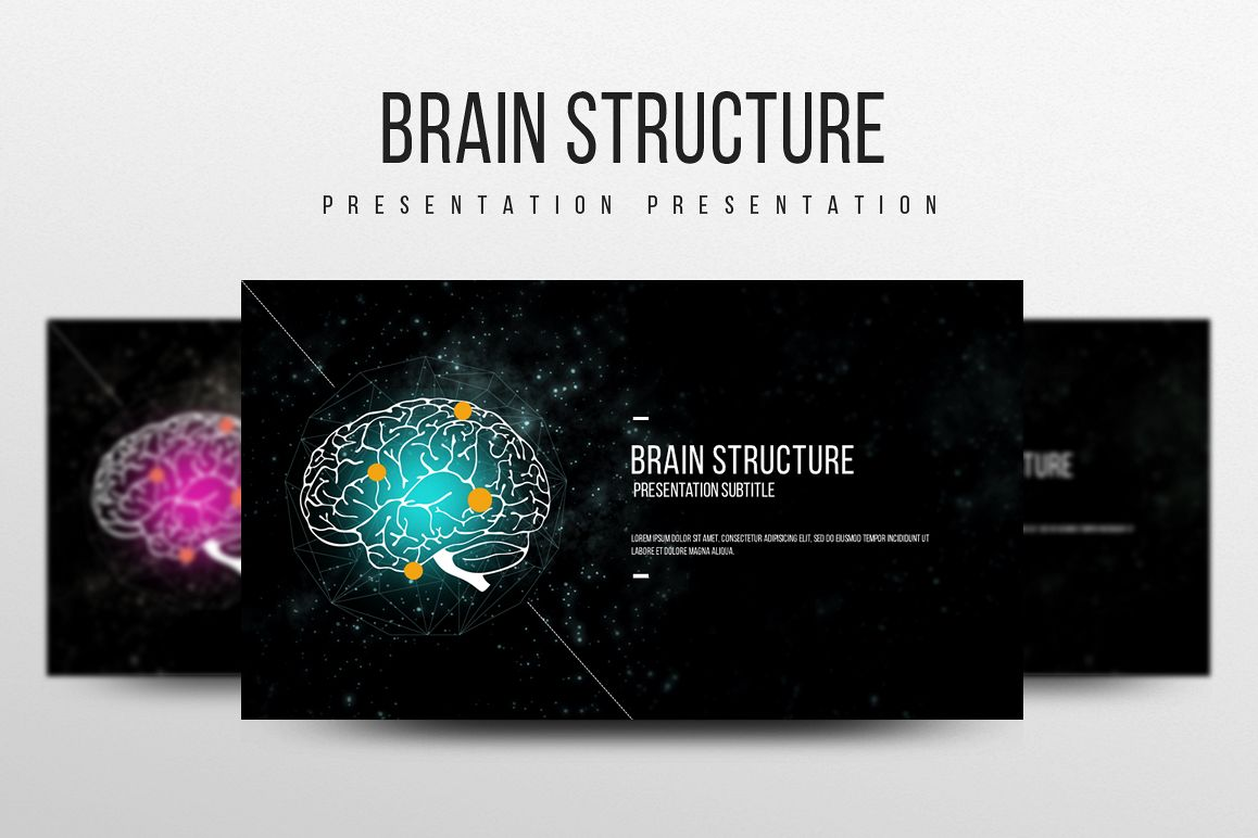 Brain Structure PPT example image 1