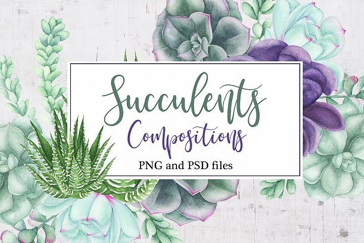 Watercolor Succulents Compositions