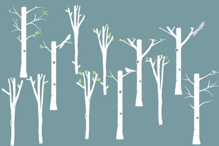 Digital White Birch clipart, Tree clipart, Birch png, svg