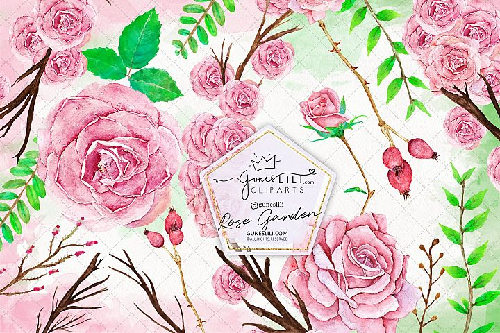 Rose Garden Hand Painted Watercolor Cliparts