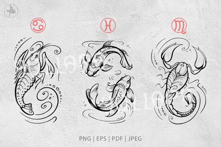Water zodiac signs collection, horoscope vector graphics