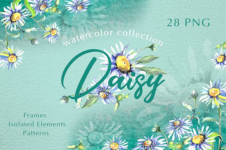 Daisy flower green watercolor png