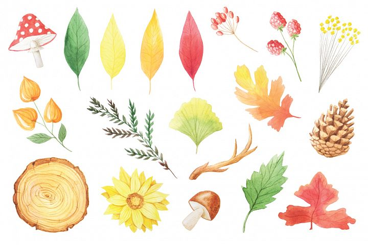 The Watercolor Autumn Collection  - Free Design of The Week Design 2
