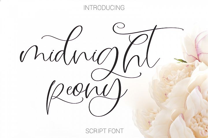 Midnight Peony Script Font example image 1