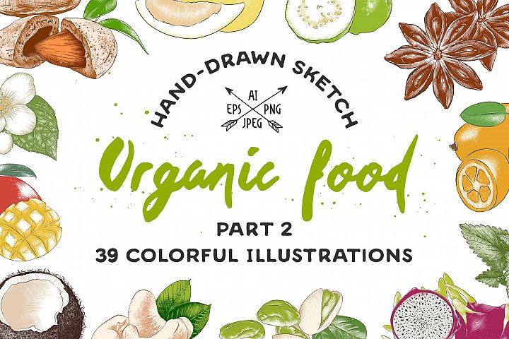 Set of 39 organic food sketches
