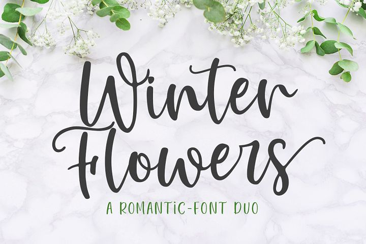 Winter Flowers - Font Duo