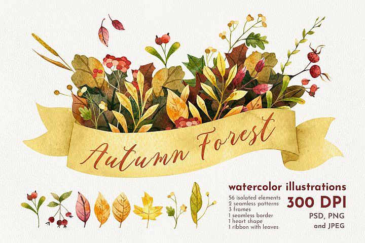 Autumn Forest. Watercolor illustration set