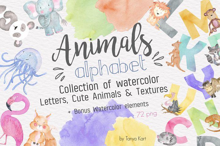 Animals Alphabet Watercolor Kit