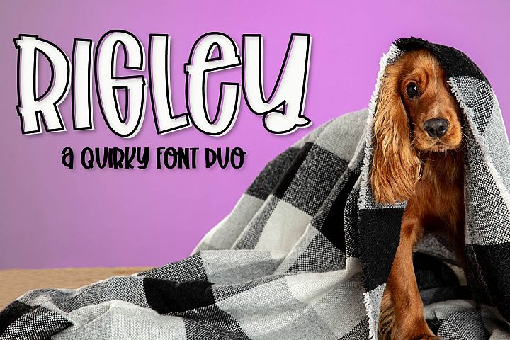 Rigley - A Quirky Font Duo