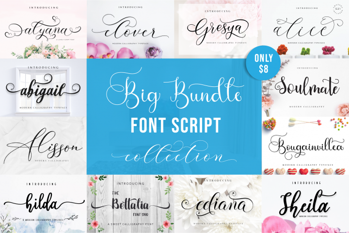 Special Fonts Bundle