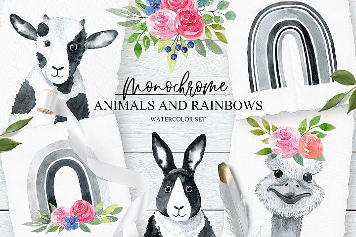 Monochrome Animals and Rainbows