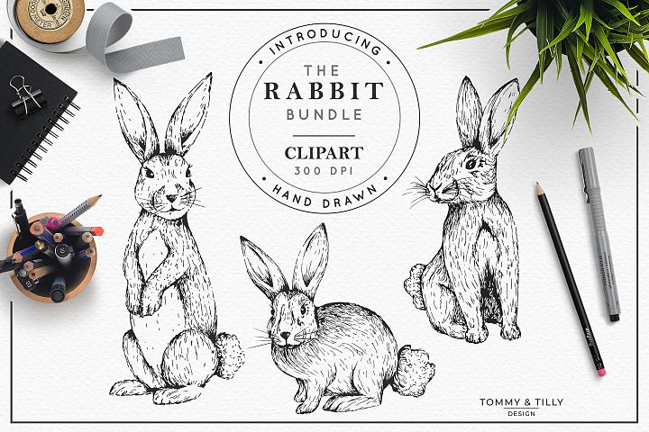 Hand Drawn Rabbit Bundle | High Quality Clipart | Png |