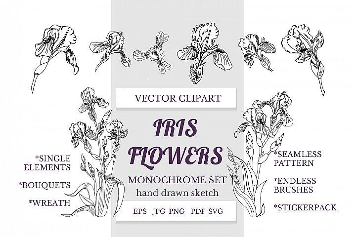 Hand drawn ink sketch of iris flowers. Vector elements.