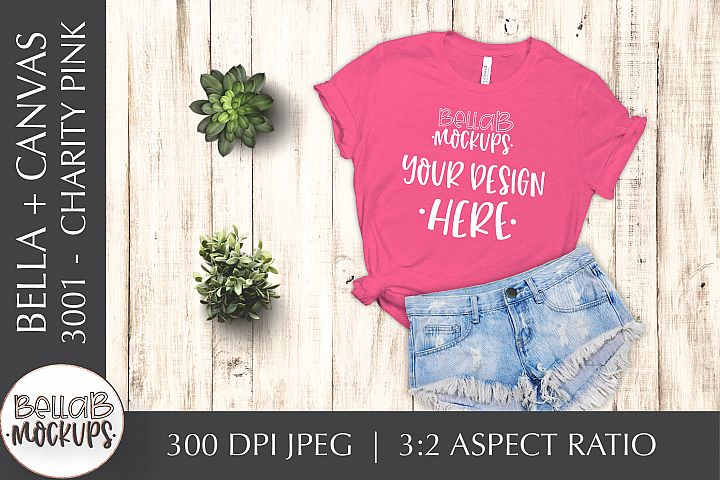 Bella Canvas 3001 Womans T Shirt Mockup, Charity Pink