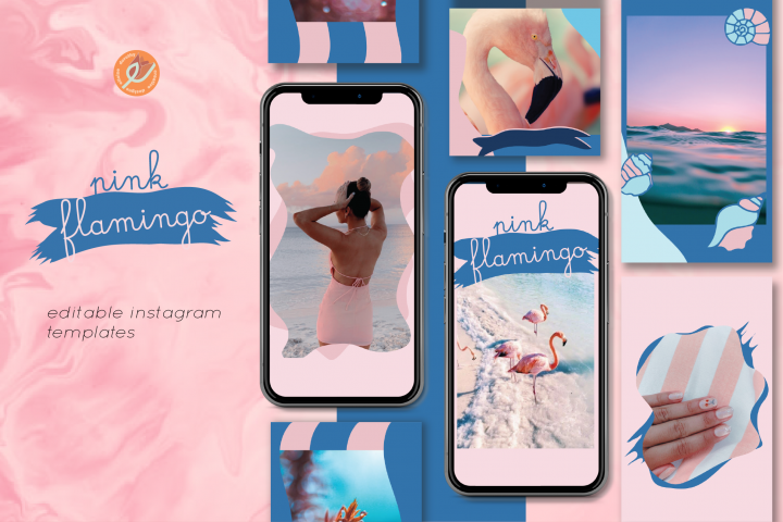 Pink Flamingo Editable Instagram Story Templates