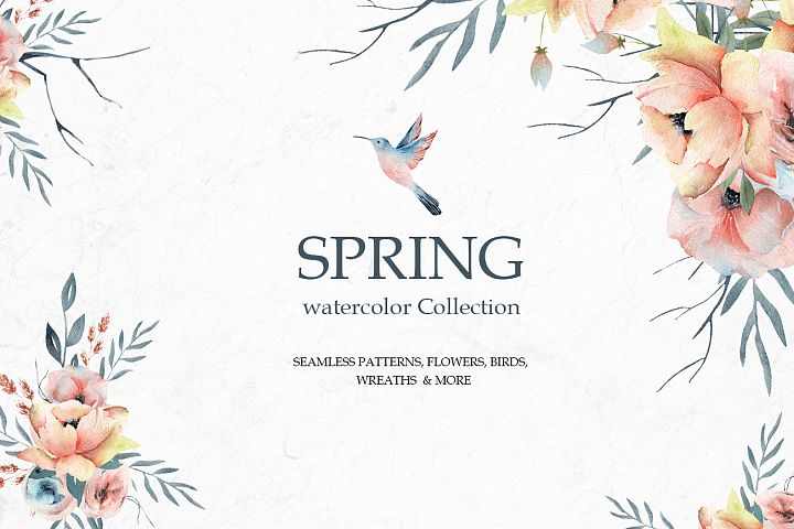 Spring Watercolor Collection, Summer coral and pink flowers