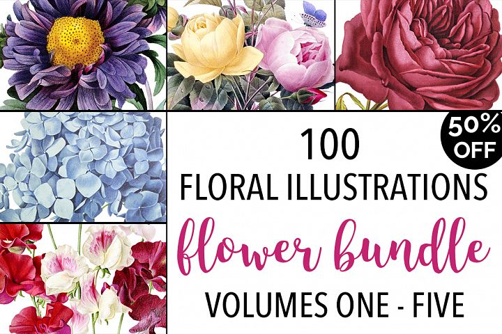 Watercolor Flowers Set Anthology 01