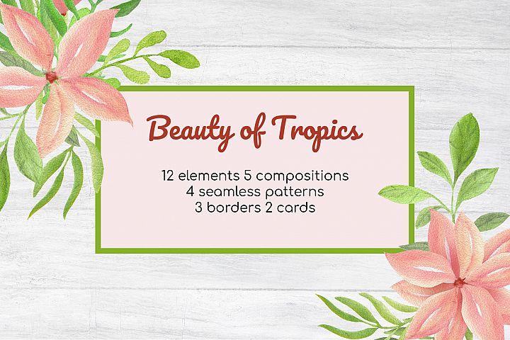 Beauty of Tropics watercolor illustrative elements set