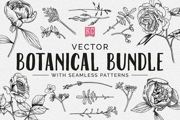 Vector Botanical Bundle Illustrations