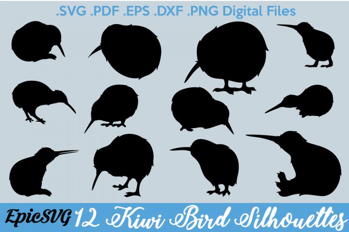 12 Kiwi Bird Silhouettes   Digital Files for Cut Machine