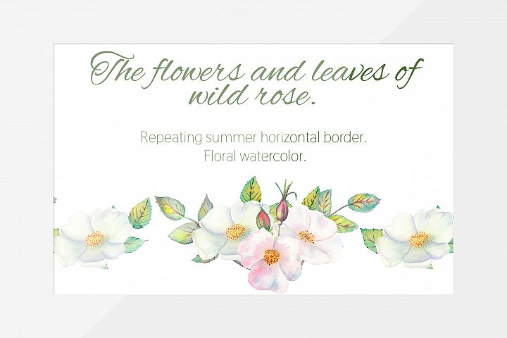 The flowers and leaves of wild rose. Horizontal border