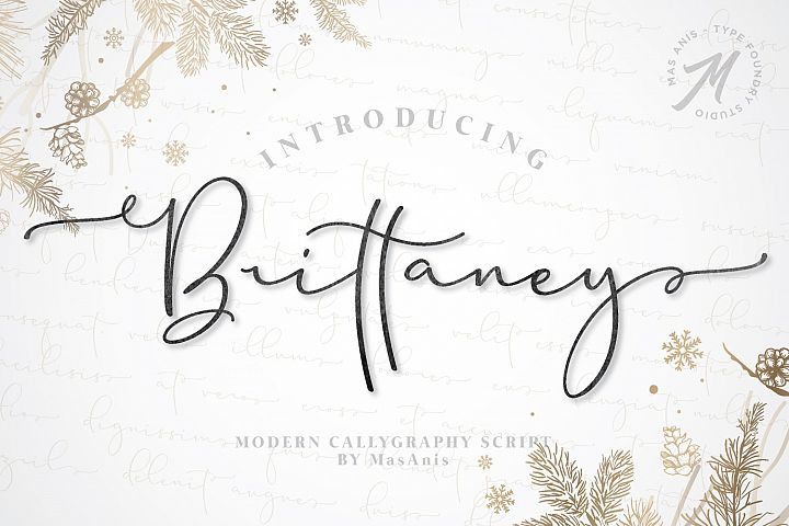 Brittaney - Modern Calligraphy Font