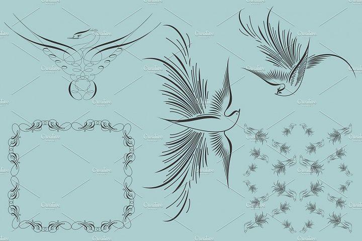 Zanner Birds Vector Collection Mixed